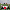 BAŞAKPINAR BELEDİYESPOR'DAN AHDE VEFA