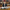 BAŞKAN TOK, TÜRK-İSLAM ALEMİNİN REGAİP KANDİLİ'Nİ KUTLADI